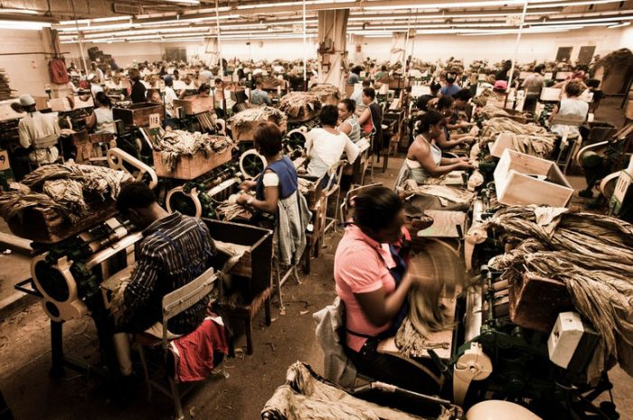 Сигарная фабрика Доминиканской Республики