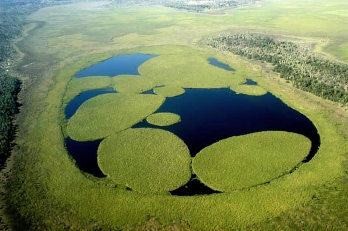 Водно-болотные угодья Иберы